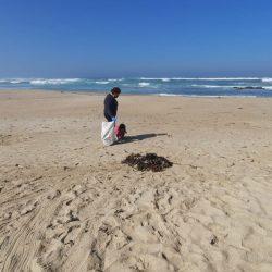 Día mundial de limpieza de playas y océanos se llevó a cabo en la comuna de El Tabo